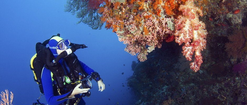 Rebreather-diver-on-wall-at-Wakatobi_walt-stearns_MG_0302-2-940x400