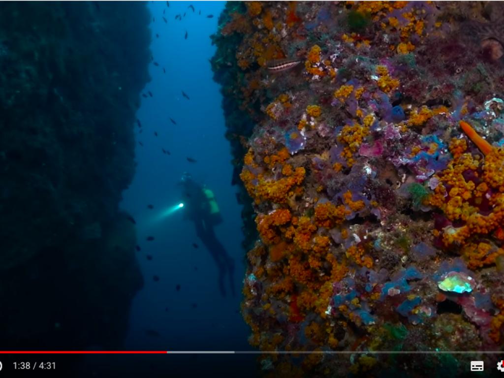 Captura de pantalla 2018-10-11 a las 11.53.47